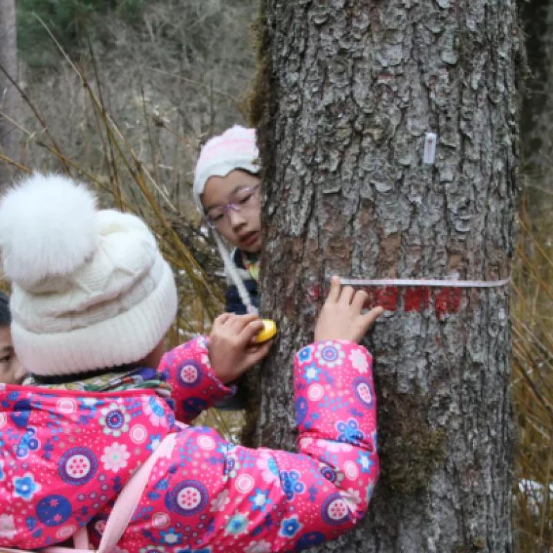 自然教育项目